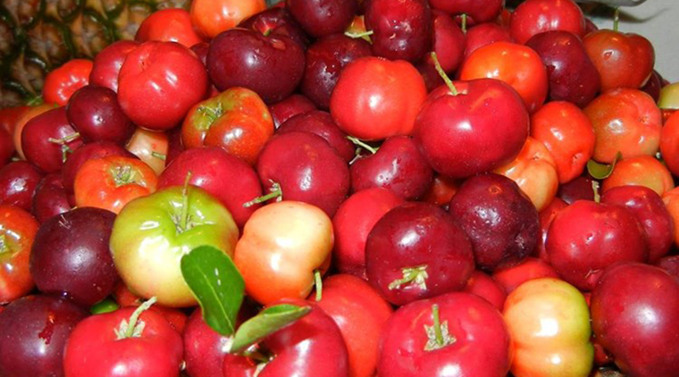 Jamaican Cherry Juice image